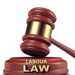 PULSE, A WORKING TOOL FOR THE LABOUR LAW